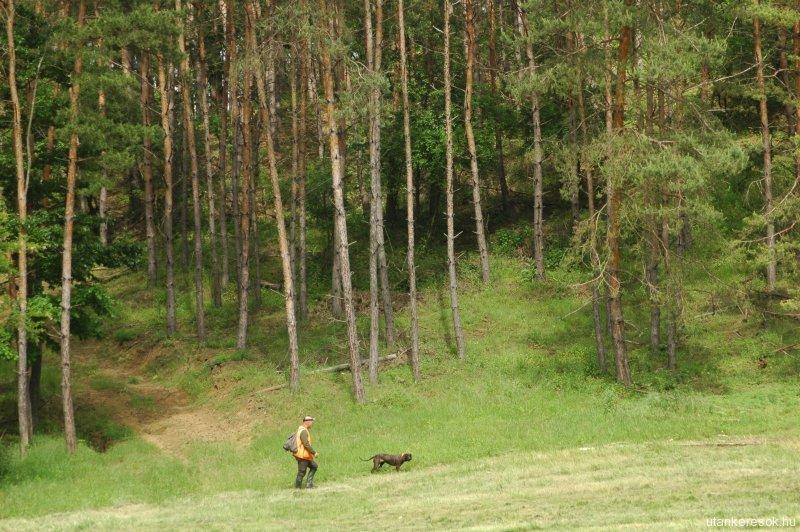 foto_andrasfalvi-farago-zoltan-53