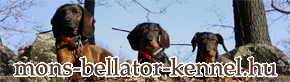 Mons Bellator kennel